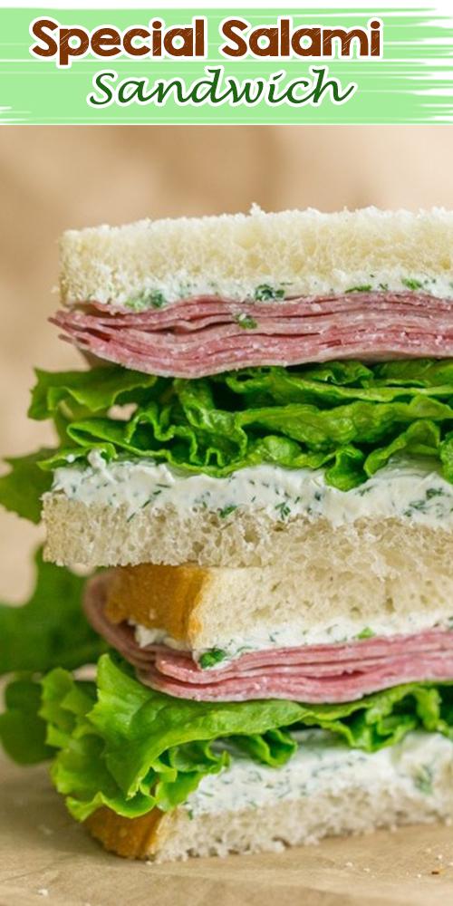 Special Salami Sandwich
